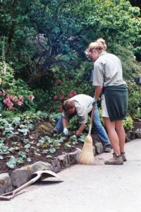 gardeners-1498115